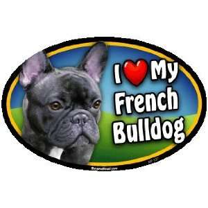 Oval Car Magnet   I Love My French Bulldog