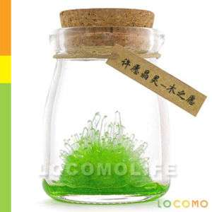 DIY Growing Crystal Powder Bottle Educational Toy GREEN