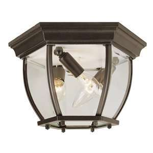 Trans Globe 4906 SWI Outdoor Close to Ceiling Light