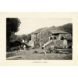 1915 Print Minho Portugal Farmhouse Cattle Livestock Agriculture