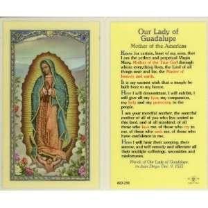 Our Lady of Guadalupe Holy Card (800 283)  Kitchen