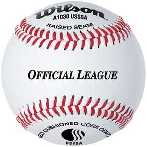 Wilson USSSA A1030B League Leather Baseballs Sports