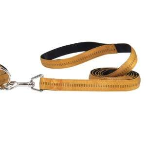Zack & Zoey Padded Nylon Lead 4 Ft Gold